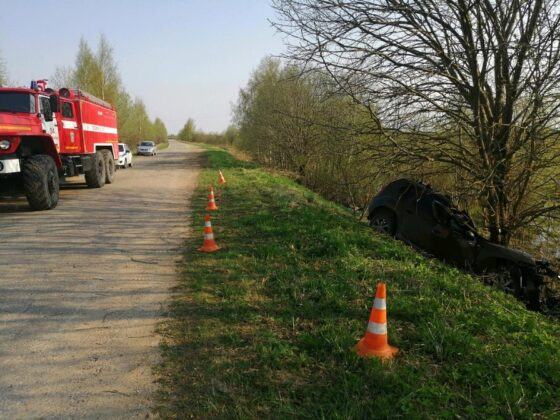 Непристегнутый водитель погиб в Тверской области, налетев на дерево