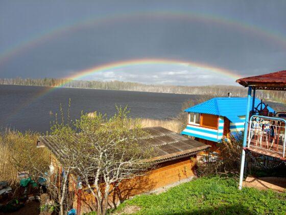 Озеро с уникальными краснокнижными растениями может погибнуть в Тверской области