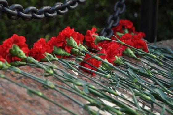 В Тверской области ищут родных солдата, погибшего в урочище Дубовик