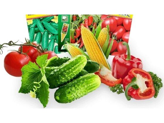 В Тверской области торговали непонятными саженцами и семенами