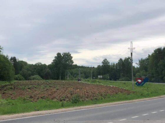 Сельское поселение под Тверью предлагает горожанам выращивать картошку