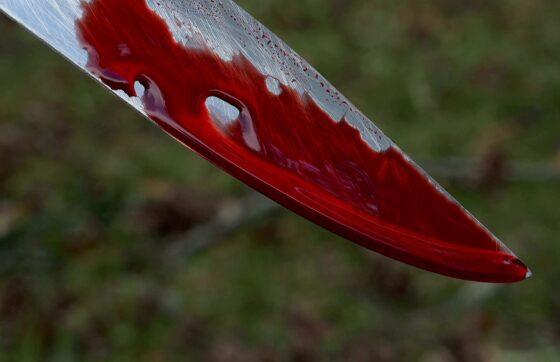В Тверской области жена убила мужа ударом ножа в шею