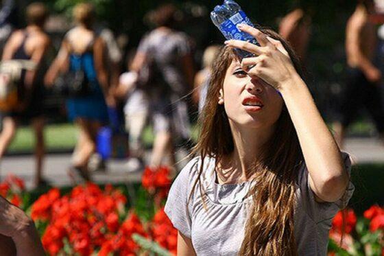 Не пьем, надеваем шляпы, очки: МЧС призывает избегать перегрева