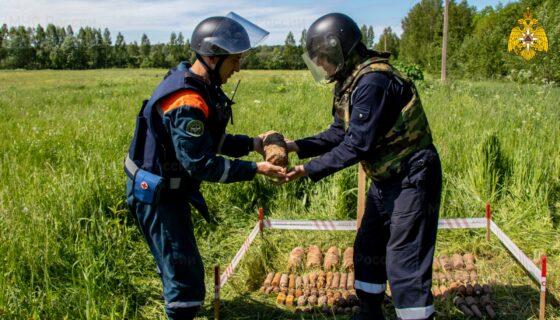 В Тверской области  за 10 дней нашли 99 снарядов времен Великой Отечественной