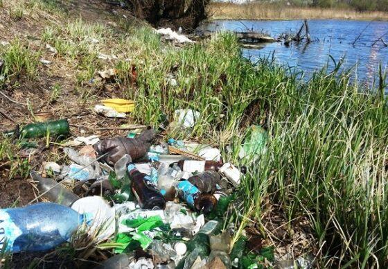 В Тверской области вместо благоустройства захламили берег пруда