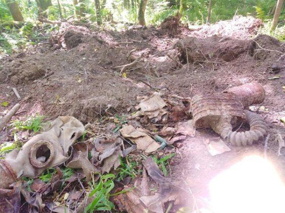 В Тверской области нашли останки бойца из Читинской области
