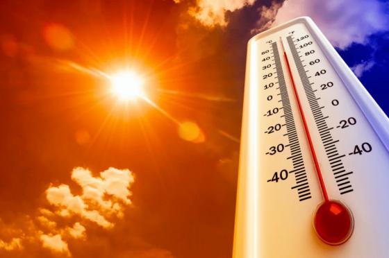 Аномальная жара задержится в Тверской области до середины июля
