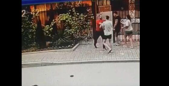 Сотрудник отеля избил тверского зоозащитника, который заступился за собаку