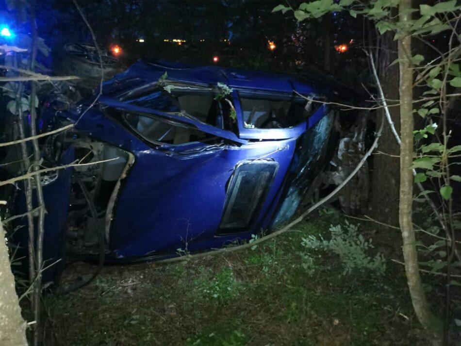 В Тверской области водитель - меломан врезался в дерево