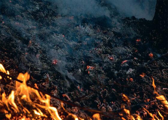 Под Тверью у Орши горел торф