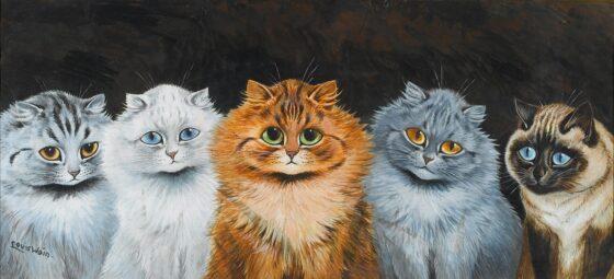 Жители Тверской области могут заболеть шизофренией из-за кошек
