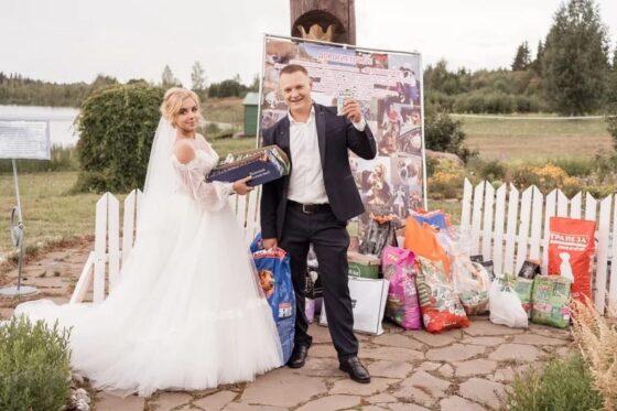 В Тверской области молодожены попросили дарить им не подарки, а корм для животных
