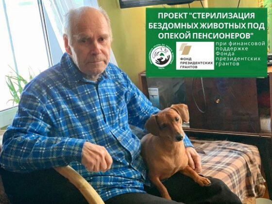 В Твери стерилизуют кошек и собак, которых опекают пенсионеры